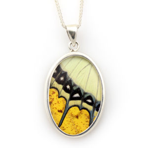 "Butterfly Artworks Large ""Yellow Oval"" Pendant"